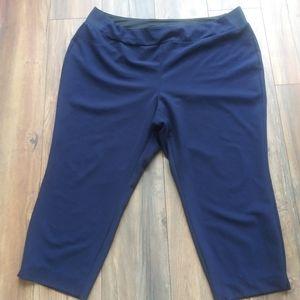 INVESTMENTS capri pants size 22W navy blue has spr